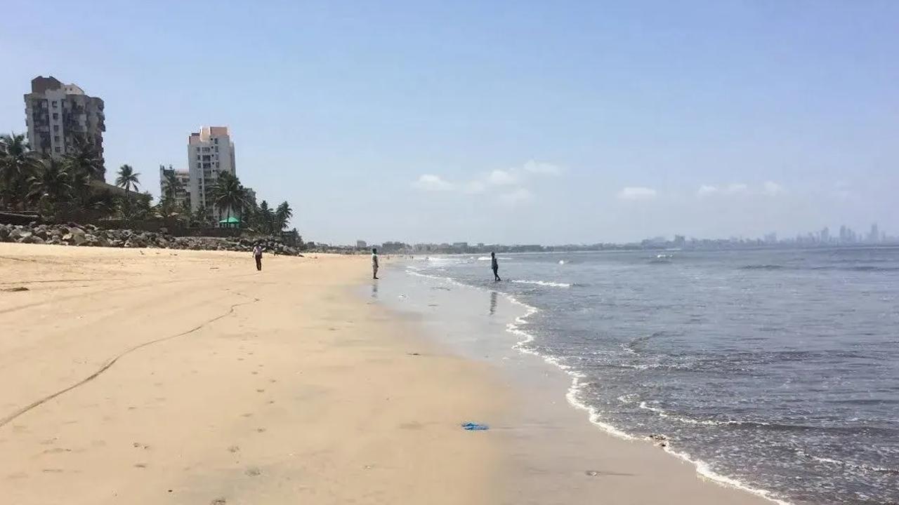 कौन यही जो करता है Beach की साफ़ सफाई