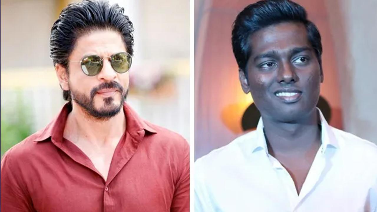पुणे के राहुल बने शाहरुख की टीम के 'हीरो'
